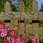 Add Charm to Your Backyard with a Garden Fence